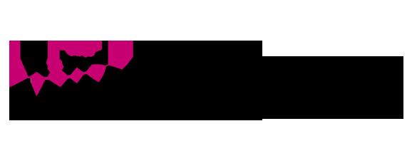 AID Logo